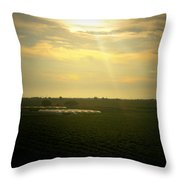 Valley Vines Throw Pillow