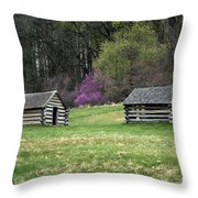 Vally Forge Park Throw Pillow