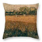 Van Gogh: Arles, 1888 Throw Pillow