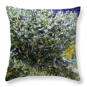 Van Gogh: Lilacs, 19th C Throw Pillow