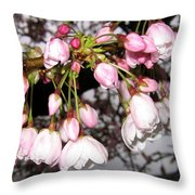 Vancouver Cherry Blossoms Throw Pillow