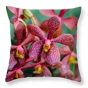 Vanda Orchids Throw Pillow