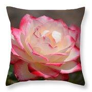 Vanilla Cherry Rose Throw Pillow