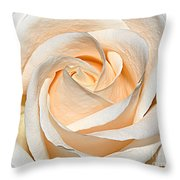 Vanilla Cream Throw Pillow