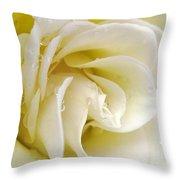 Vanilla Swirl Throw Pillow