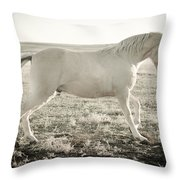 Vanilla Walker Throw Pillow