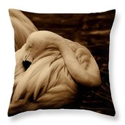 Vanity II Throw Pillow