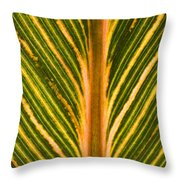 Variegated Banana Leaf Throw Pillow
