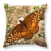 Variegated Fritillary Throw Pillow