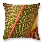 Variegated Ti-leaf 1 Throw Pillow by Ron Dahlquist - Printscapes