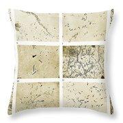 Various Bacilli Observed By Robert Koch Throw Pillow