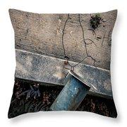 Vase Hanging - Nola Throw Pillow
