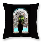 Vase In A Window Throw Pillow