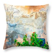 Vase On Decayed Wall Throw Pillow