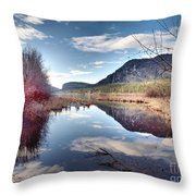 Vaseux Reflections Throw Pillow