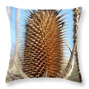Vault Throw Pillow
