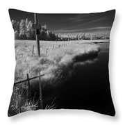Vay Road Ditch 6 Throw Pillow