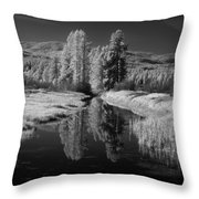 Vay Road Ditch Throw Pillow