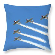 Vee Formation Throw Pillow