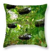 Vegetable Growing In Used Water Bottle 4 Throw Pillow