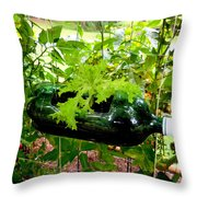 Vegetable Growing In Used Water Bottle 7 Throw Pillow