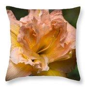 Veiled Mother Of Ivory Iris Throw Pillow