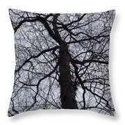 Veins And Vessels Throw Pillow