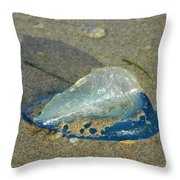 Velella With Shadow Throw Pillow