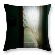 Velvet Afternoon Throw Pillow