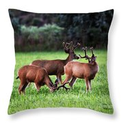 Velvet Antlers In The Sunset Throw Pillow