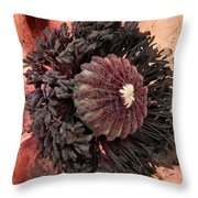 Velvet Core On Pink Throw Pillow