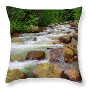 Velvet Green Forest Throw Pillow