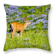Velvet On Lupine Throw Pillow