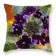 Velvet Petals Throw Pillow