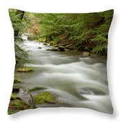 Velvet Stream Throw Pillow