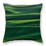 Velvety Throw Pillow