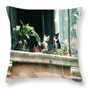 Venetian Cats Throw Pillow