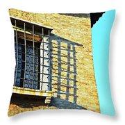 Venice Window Throw Pillow