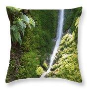 Ventana Wilderness Throw Pillow