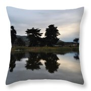 Ventura California Coast Estuary Throw Pillow