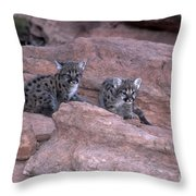 Venturing Out Throw Pillow