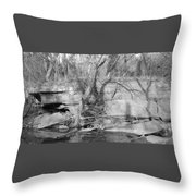 Veranda Throw Pillow