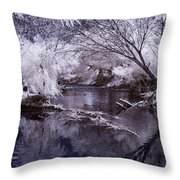 Verde Spring Reflections Throw Pillow