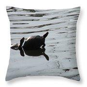Vereen Turtles Throw Pillow