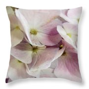 Verging On Violet Throw Pillow