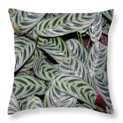 Verigated Green Leaves Throw Pillow