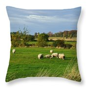 Vermont Country Life Throw Pillow