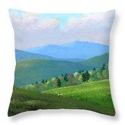 Vermont Pastures Throw Pillow