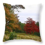 Vermont Roadside Color Throw Pillow