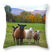 Vermont Sheep In Autumn Throw Pillow